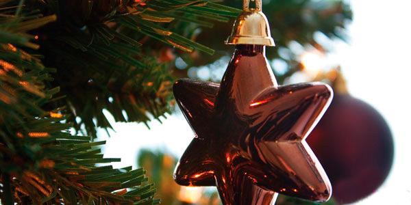 kerstdiner rhenen